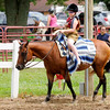 Don Knight | The Herald Bulletin<br /> 4-H Fair on Friday.