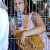 Katelyn Rogers, 14, holds her first place ribbon in her mouth as she retrieves her bird after being judged.