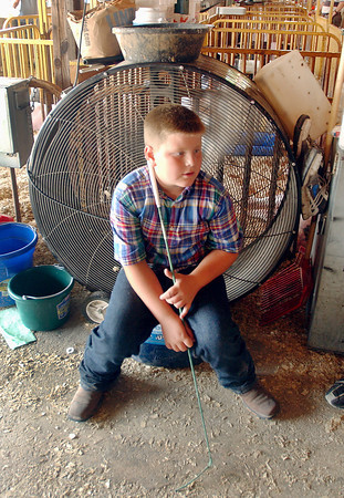 Miller Smith, 10, cools off sitting in front of a large fan inside the hog barn Monday.
