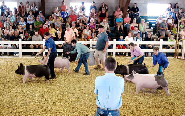 John P. Cleary |  The Herald Bulletin<br /> As a large crowd looks on in the show arena, 4-H'ers parade their swine past judge Miles Tdebyes from Highland, Ill.