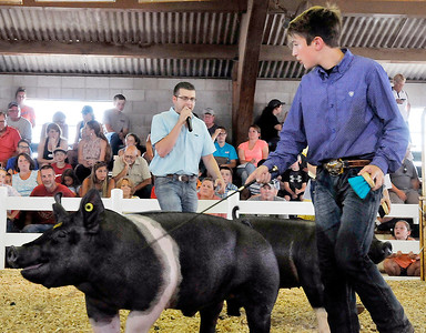 Monday at the 2017 Madison County 4-H Fair