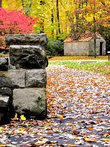 """""""Fall Beauty"""" by Kayla Wright Digital Photography Class"""