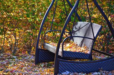 """Fall Beauty"" by Kyle Masek Digital Photography Class"
