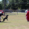Dog demonstrations by Southern K9 Solutions.   NO dogs or people were injured!