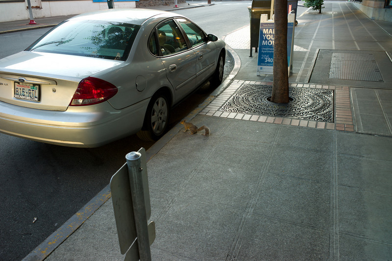 In front of our apartment on my way to work this morning.