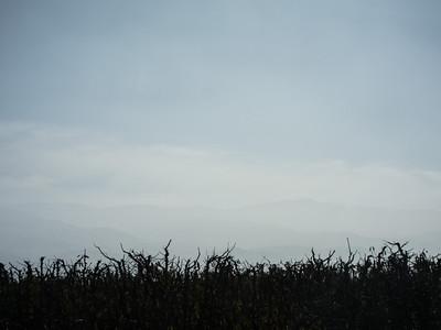 20131201-IMG_3446