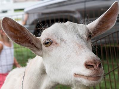 Farmers Market 7-14-2012