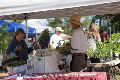 Farmers Market, Northstar House