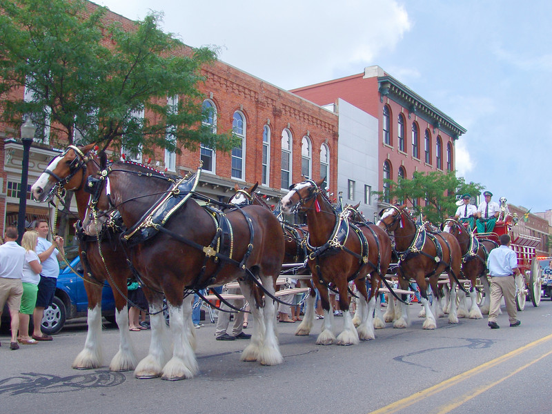 The Budweiser Clydesdales' second visit to downtown Howell, Father's Day 2009. The Budweiser Clydesdales were formally introduced on April 7,1933, to celebrate the repeal of Prohibition for beer. August A. Busch Jr. and Adolphus Busch III. presented a hitch of horses to their father to celebrate the day. To their father's delight, the hitch thundered down Pestalozzi Street carrying the first case of post-Prohibition beer from the St. Louis brewery.