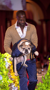 FIDM model Cameron Frasier. Model dog Bisou's manly bomber jacket was designed by Joshua Christensen from Snohomish WA.