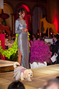 FIDM model Symone Street. Model dog Daisy's fun child-like dress is the creation of Wensi Gao, born in China.