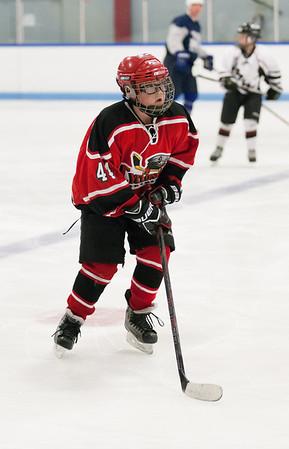 Father-Son Hockey 22 Nov 2012