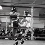 Multi - Fight - Female Bout