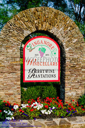 Linganore Wine Festival