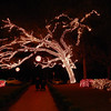 Festival of Lights at Stephen Foster Folk Culture Center State Park