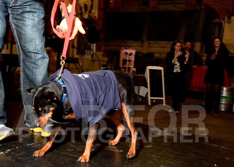 Puppy Love Valentines Party 2014, Devil's Alley & Smokin' Betty's