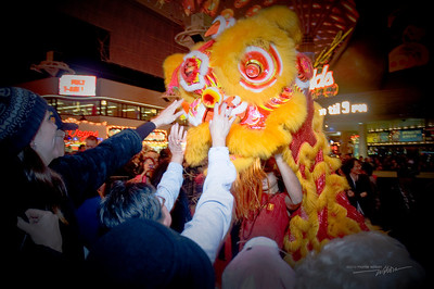 It is said that touching the nose of the lion during the Lion Dance will bring you good luck for the year.