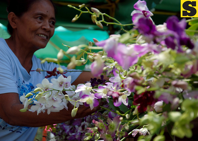 DAVAO. A vendor arranges flowers at her stall in the the Agro-Trade Fair at the back of SM City Davao on Friday. Once a year, flower traders and growers from various areas gather in the trade fair and showcase exotic, colorful, and ornamental flowers, as part of Kadayawan sa Dabaw annual celebration. (King Rodriguez)