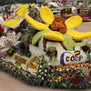 Taloy Norte Farmers join Panagbenga 2014 float parade