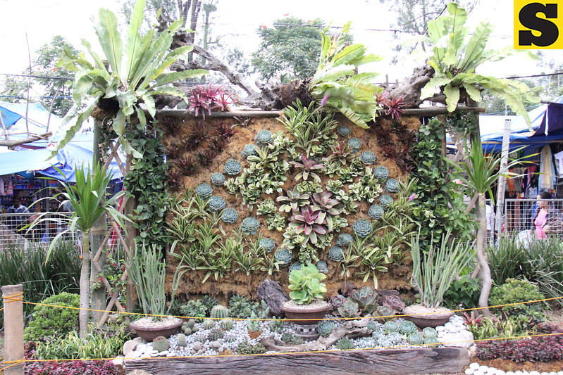 Entries to the 18th Panagbenga Festival 2013 landscaping competition are on display at the Burnham Park in Baguio City. (Ariel B. Catubig photo)