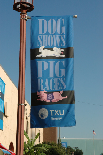 Where else can you see a dog show AND pig races in one place???