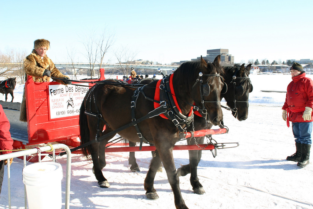 Horse drawn slieghs are popular with the kids and adults alike.