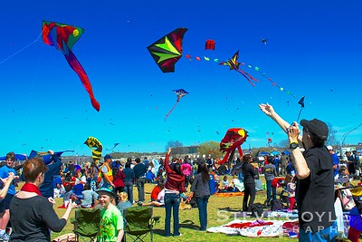 Kites filled the air on this windy March afternoon in Austin, Texas at Zilker Park