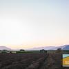 Field Trip Dinner ~ Biddle Ranch Vineyard_039