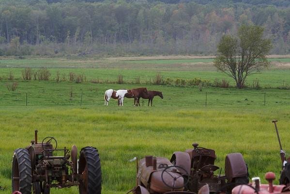 Field of Tractors