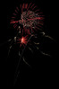080704_Fireworks_013