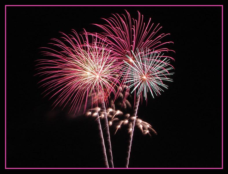 PinkBlooms2Fr