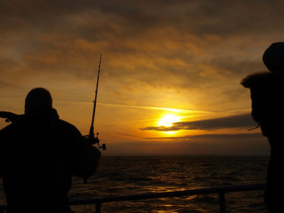 Fishing trip on board the god ship 'Hanne Berit of Rungsted' Photo: Martin Bager.