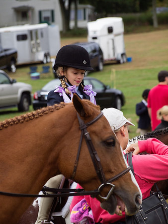 Folly Farm Classic Horse Show_2012