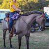 Beautiful color horse!