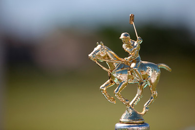 scene - trophy top 9132_polo_sunday