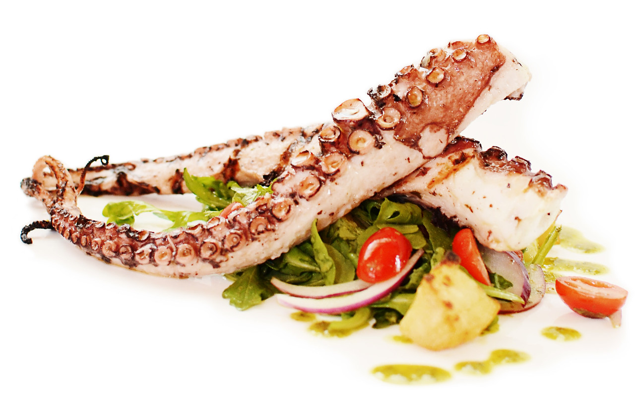PMC_8200 JOE Octopus