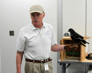 Wayne and Corbie tell stories about a bird not from the Anchorage area.