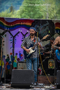 D75_0274-12x18-07_2017-Forest_Faire