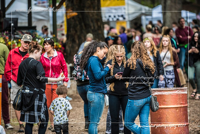 D75_0437-12x18-07_2017-Forest_Faire-W