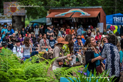 D75_0446-12x18-07_2017-Forest_Faire-W