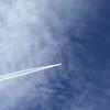 Sky diver airplane overhead.