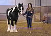 Elizabeth Krottinger and her Gypsy horse Adair.