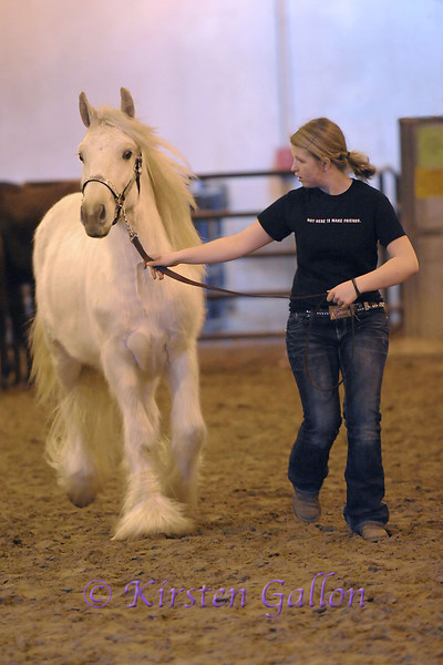 KATIE SHARP exercises a white Gypsy horse prior to going to the arena for judging.