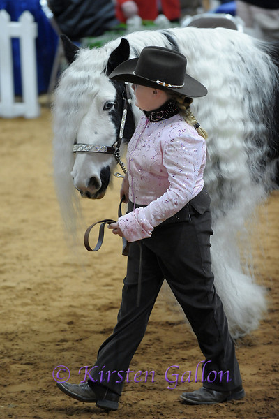 HALLIE HEARON AND 4C KELLY GIRL as they walk into the area for the World Champion category for the Gypsy horse competition.