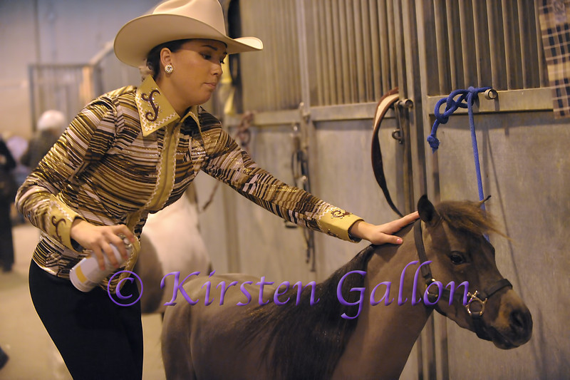Kelbi Gray puts the finishing touches on one of her miniature horses before heading to the show ring.