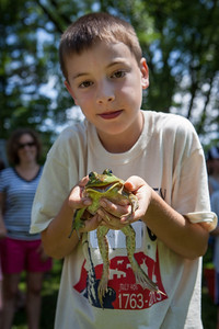 20130704_frogs-9811