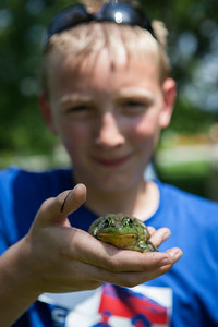 20130704_frogs-9852
