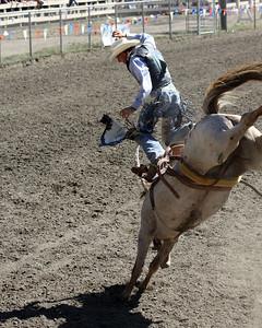 Fortuna Rodeo 2010