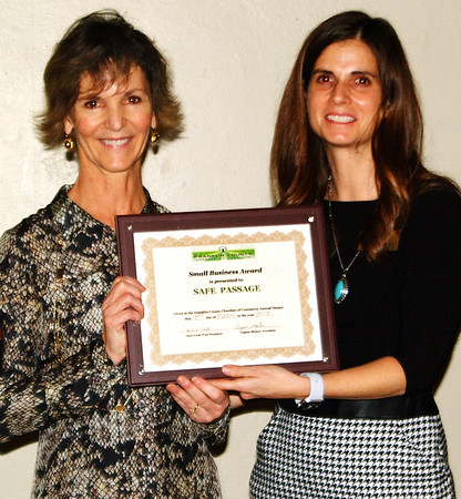 Debbie Blank | The Herald-Tribune<br /> The chamber's Small Business or Organization Award was given to Safe Passage, represented by Mary Mattingly (left). The presenter was board member Beth Siebert.