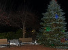 Goffstown Tree Lighting-7470